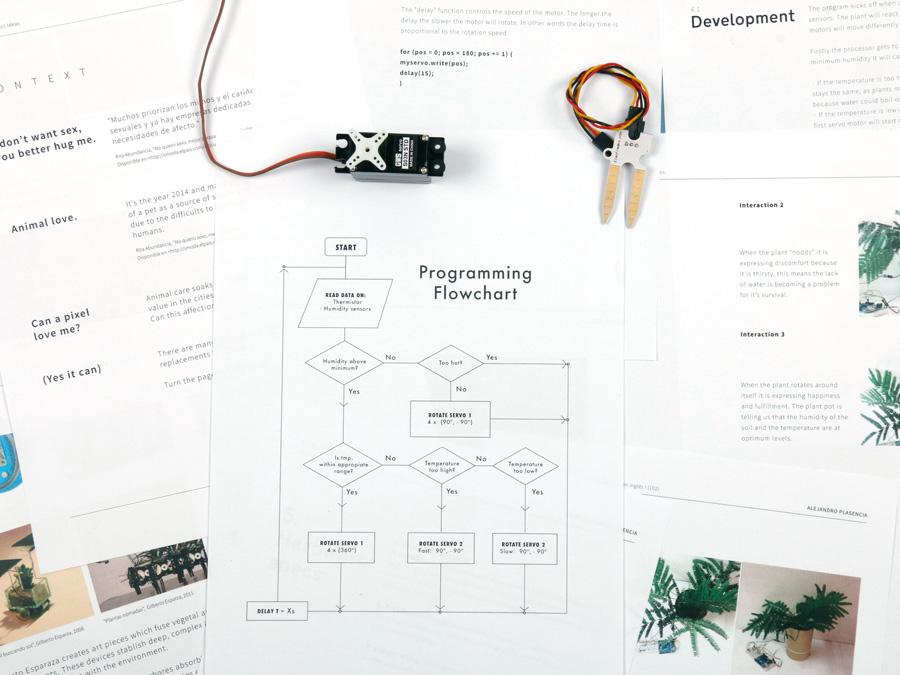 Fiodor_programming_flowchart